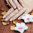 Royalty-Free Stock Photo: French Manicure