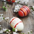 Easter Eggs — Stock Photo #9707194