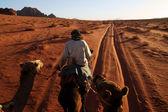 Montar en camello en wadi rum, jordania — Foto de Stock