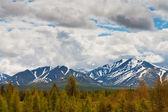 Beautiful landscape — Stock Photo