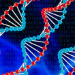 Stock Photo: DNA structure
