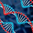 DNA structure — Stock Photo