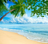 Beach tropical — Stock Photo