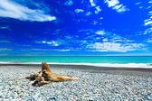 Tasman sea — Stock Photo