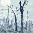 Spooky forest - Photo
