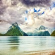 Milford sound — Stock Photo #9616065