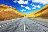 Cardrona valley road — Stockfoto