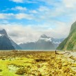 Milford sound — Stock Photo #9755561