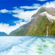 Milford sound — Stock Photo #9755847