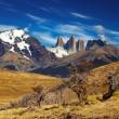 Torres del Paine, Patagonia, Chile — Stock Photo