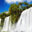Iguassu Falls, view from Argentinian side — Stock Photo
