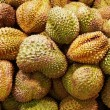 Durian fruits - Stock Photo