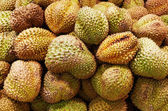 Durian fruits — Stock Photo