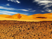 Sand dune in Sahara Desert — Stock Photo