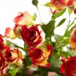 Bunch of red roses on white background - flowers and plants — Stockfoto
