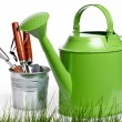 Spring gardening - Watering can, grass and garden tools on white — Stock Photo #10383127