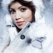 Portrait of winter woman with snow — Stock Photo #8509021