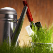 Fresh greenon wooden wall with garden tools — Stock Photo #8528925