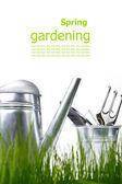 Narzędzia ogrodowe i konewka z trawy na biały — Zdjęcie stockowe