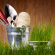 Stock Photo: Gardening tools and houseplants