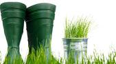 Narzędzia ogrodnicze i rośliny doniczkowe - martwa natura — Zdjęcie stockowe