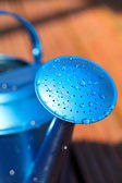 Blue watering can in garden — Stock Photo