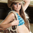Sexy Cowgirl — Stock Photo #8775971