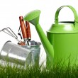 Garden tools and watering can with grass on white — Stock Photo #9102341
