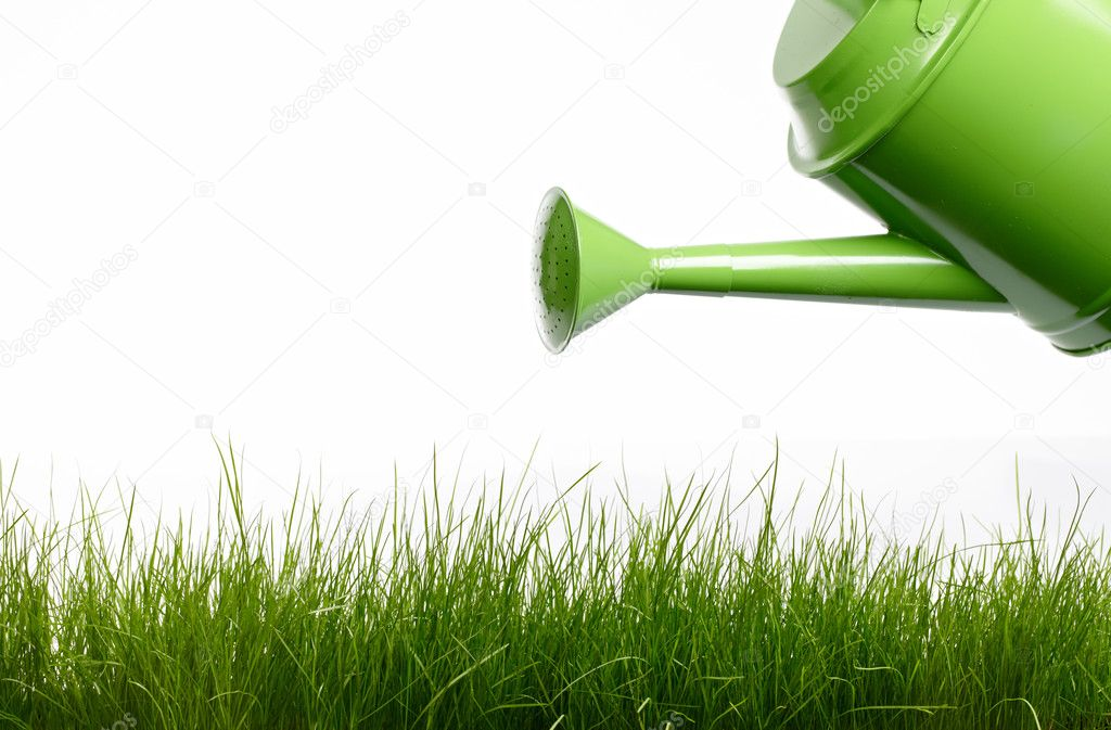 Watering Can And Grass Stock Photo Zoomteam 9102428