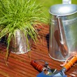 Gardening tools in garden background — Stockfoto