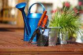 Attrezzi da giardinaggio giardino sfondo — Foto Stock