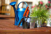 Gardening tools in garden background — Stock Photo