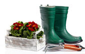 Garden tools and watering can with grass on white — Foto de Stock