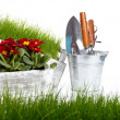 Garden tools background - Stock Photo