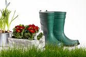 Tuingereedschap en gieter met gras op wit — Stockfoto
