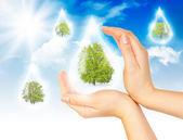 环境保护的象征 — 图库照片