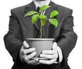Biznesmen trzyma roślina w doniczce — Zdjęcie stockowe