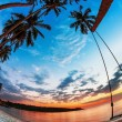 Swing on  sunset at the beach — Stock Photo