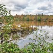 Autumnal lake — Stock Photo #10226232