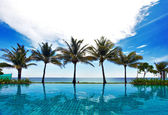Reflecties van palmen — Stockfoto