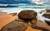Tropisk strand under mörk himmel — Stockfoto