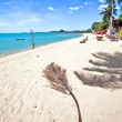 Exotic tropical beach. - Foto Stock