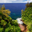 View on the ocean on Big island. Hawaii — Foto de Stock