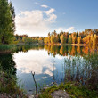 Autumnal lake near the forest - Foto Stock
