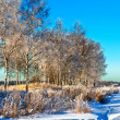 Winter field under - Stockfoto