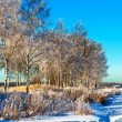 Winter field under - Foto Stock