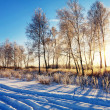 Sunset in winter field - Foto Stock