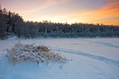 Beautiful winter sunset — Foto Stock