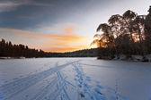 Krásné zimní slunce — Stock fotografie