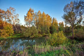 Autumnal river — Stock Photo